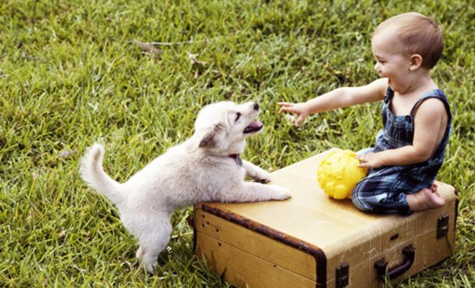 Kinder Und Tiere Kindergesundheit Info De
